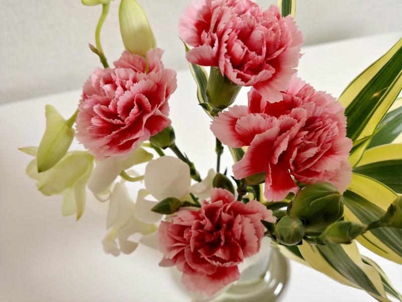 ブルーミーライフのお花のアップ